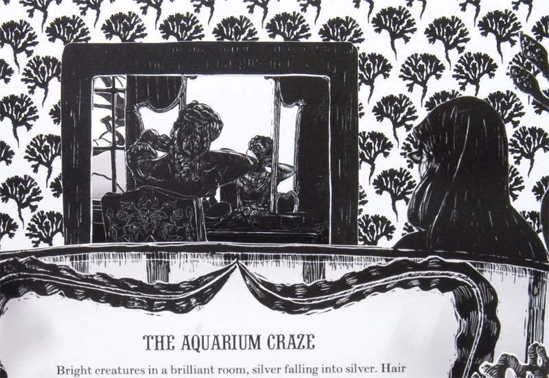 <strong>The Aquarium Craze</strong>  Detail, digital offset on paper & museum board, edition of 3, 2008.  The books unfold to reveal a series of receding planes like theater scenery.